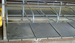 Животноводческие резиновые плиты