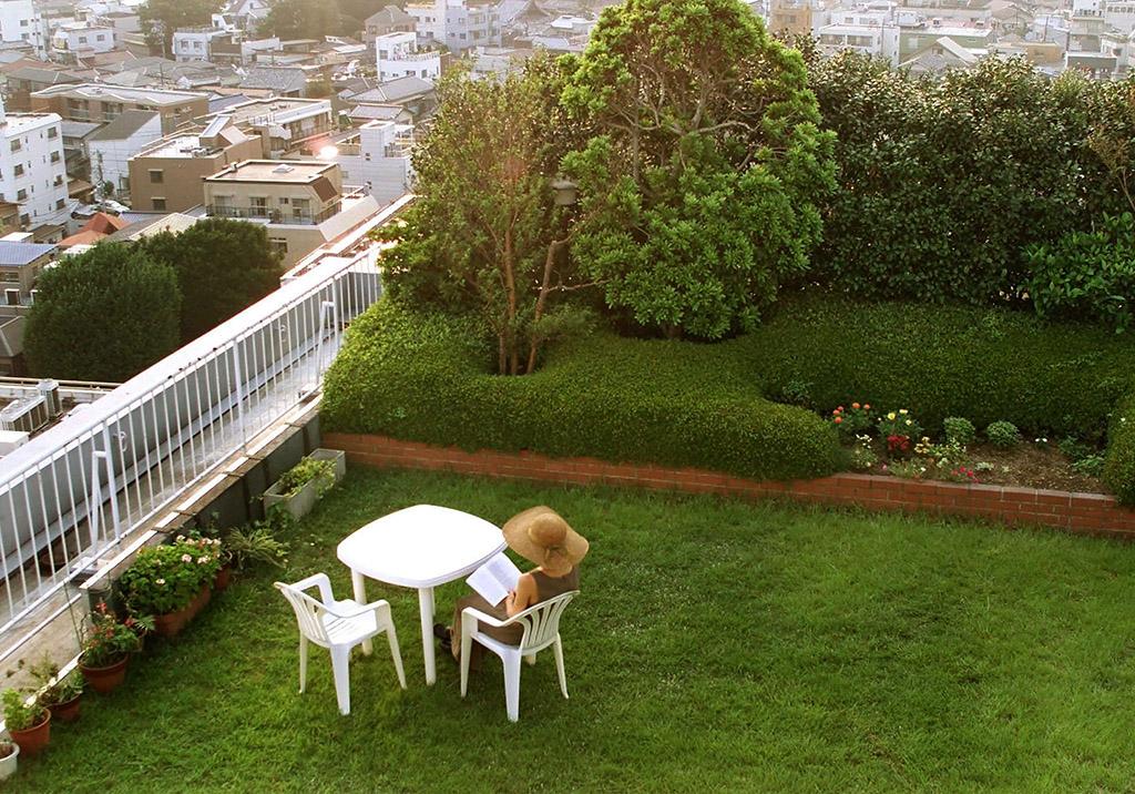 Сад на крыше дома